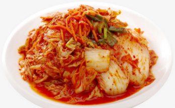 manfaat kimchi