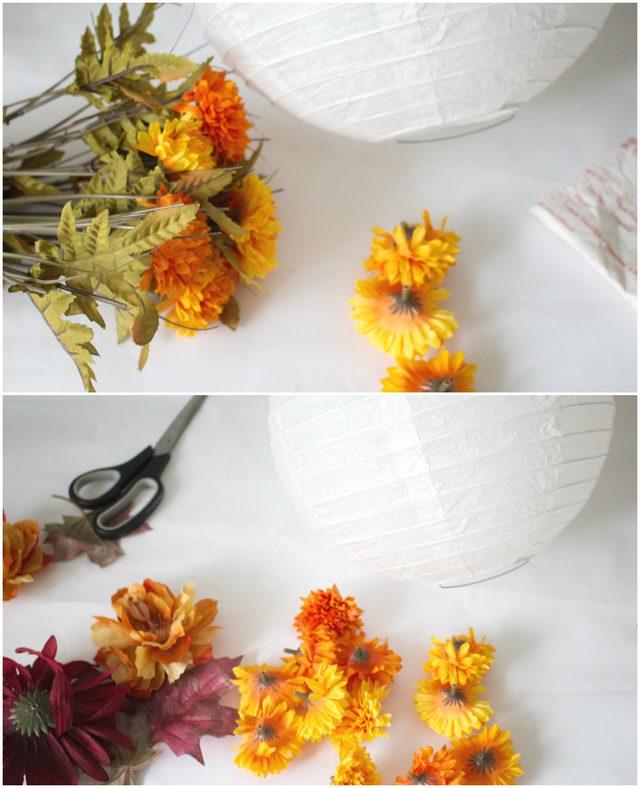 Pisahkan bunga dari tangkainya untuk lentera kertas