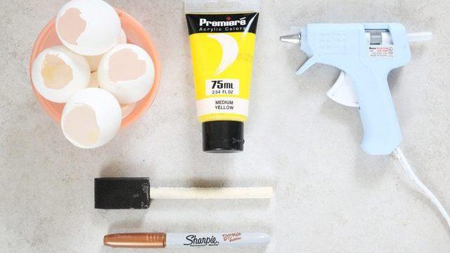 alat dan bahan tempat tanaman dari cangkang telur