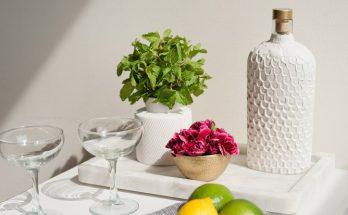 Vas Bunga dari Botol Bekas dan Tanah Liat