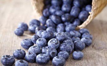 7 makanan pencegah penuaan pada kulit.